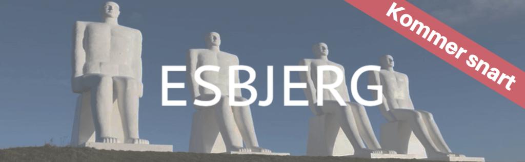 Esbjerg studierabat