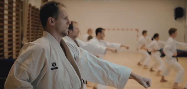 Shotokan Karate-Do karate