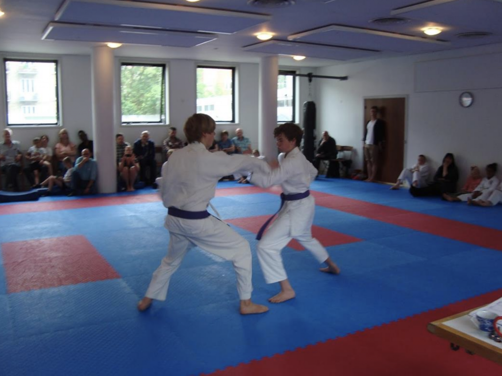 Shotokan-Karate-Do-børne-karate.png